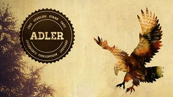 Adler - Dein Leben aus der Adlerperspektive
